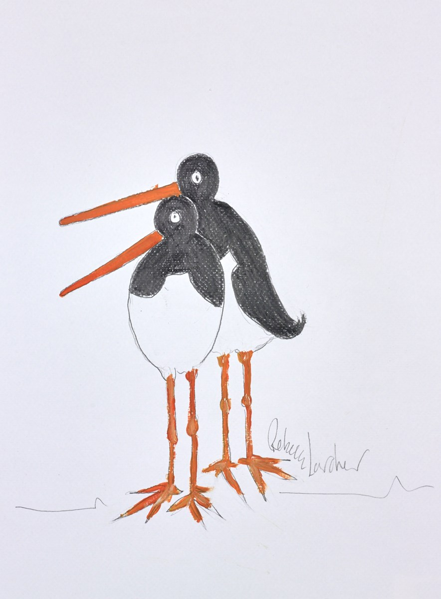Two Seabirds Sketch I by rebecca lardner -  sized 11x10 inches. Available from Whitewall Galleries
